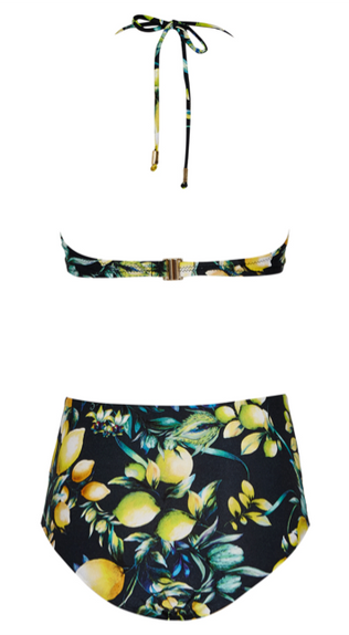 SASHA DARK LEMON PRINT