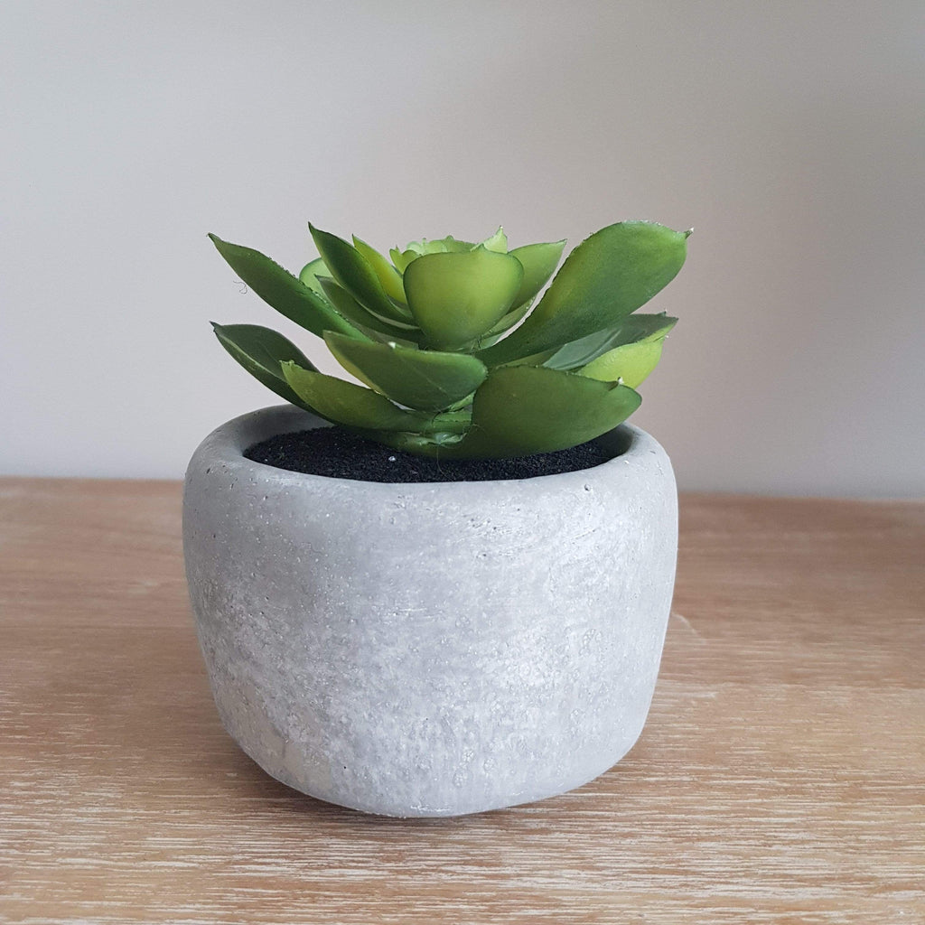Natural Grey Planter With Artificial Green Succulent - SAK Home