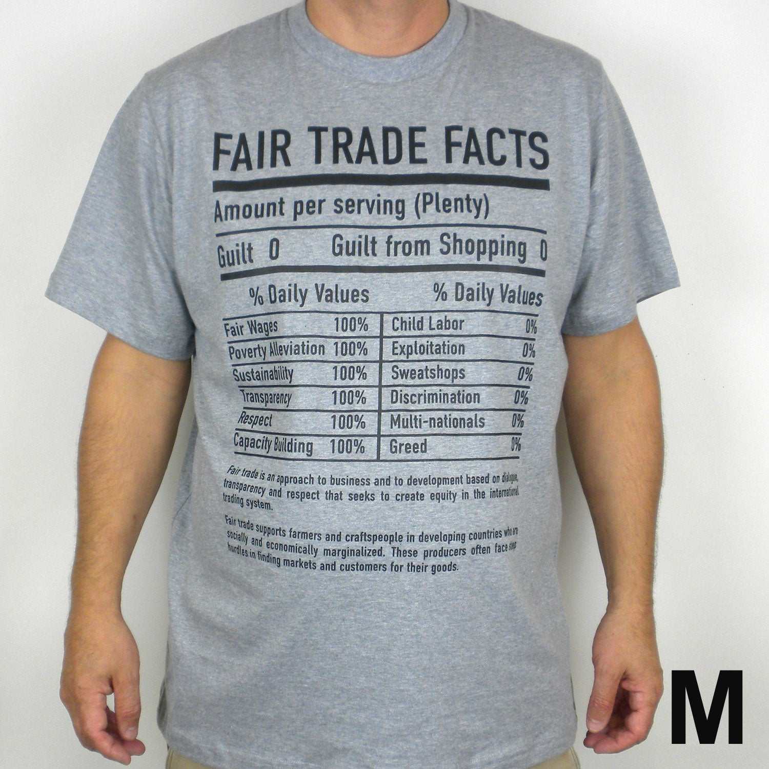 Gray Tee Shirt FT Facts on Front - Unisex Medium