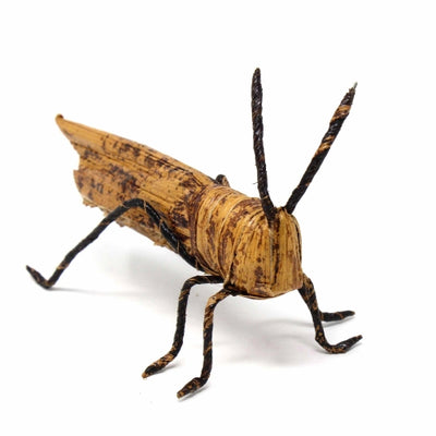 Banana Fiber Grasshopper / Cricket