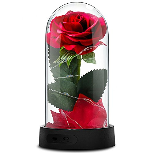 Beauty and The Beast Rose,Enchanted Red Silk Rose Lamp That Lasts Forever with LED Fairy String Lights,Fallen Petals and ABS Base in A Glass Dome,Best Gift for Her - Name Your Joy