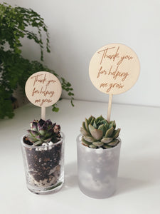 DIY Succulent Bomboniere/ Favors in Frosted Glass Vessels