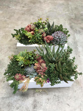 Load image into Gallery viewer, 30cm White Timber Succulent Filled Planter