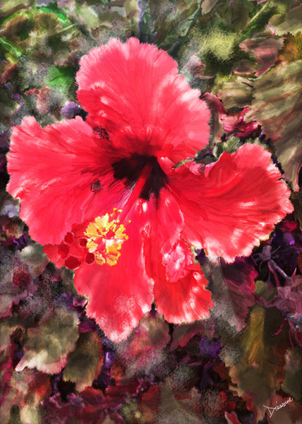 Hibiscus Fire
