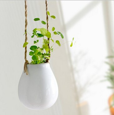 2 Pack Ceramic Hanging Planter