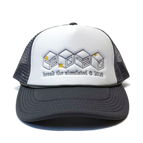 2020 Trucker Hat Grey