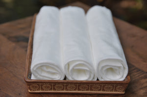 biodegradable towels