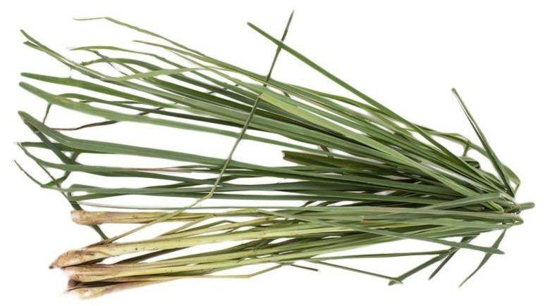 Lemongrass Tanglad (100grams) - Organics.ph