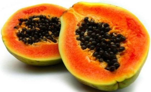 Papaya Red Lady (2kg per piece) - Organics.ph