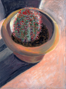 Potted Red Hooked Cactus - Vertical