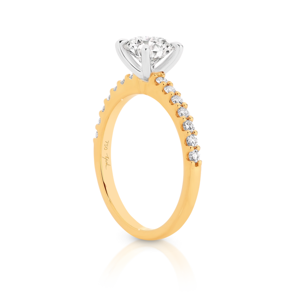Yellow Gold - Angelina - Round Brilliant Cut Four Claw Set Diamond Engagement Ring with Diamond Set Band