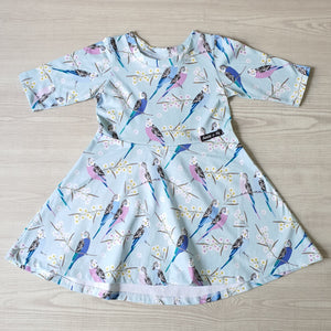 Skater Dress - Budgies