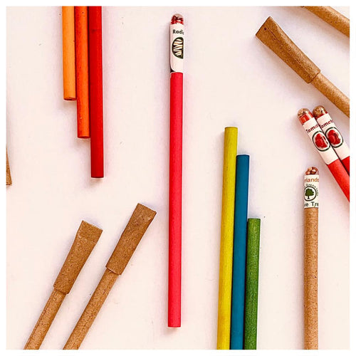 Eco-friendly Seed Pencils (Set of 10)  - Biodegradable Stationery