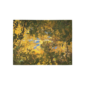 Colorado Aspens Area Rug 5'3''x4'