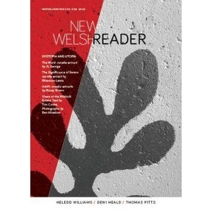 New Welsh Reader - Siop y Pethe