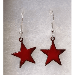 Eli-Gant Jewellery - Star Hook Earrings