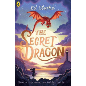 The Secret Dragon - Siop y Pethe
