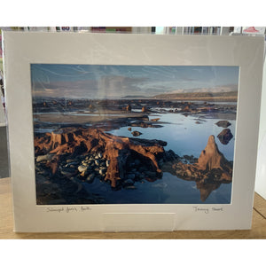 Print Mawr Jeremy Moore - Submerged Forest, Borth - Siop y Pethe