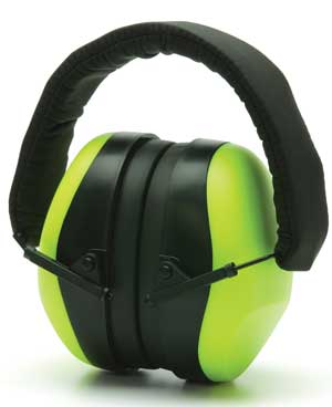 PM8031 - Ear Protection - Qualification Targets Inc