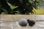 Charcoal natural makeup remover konjac sponge