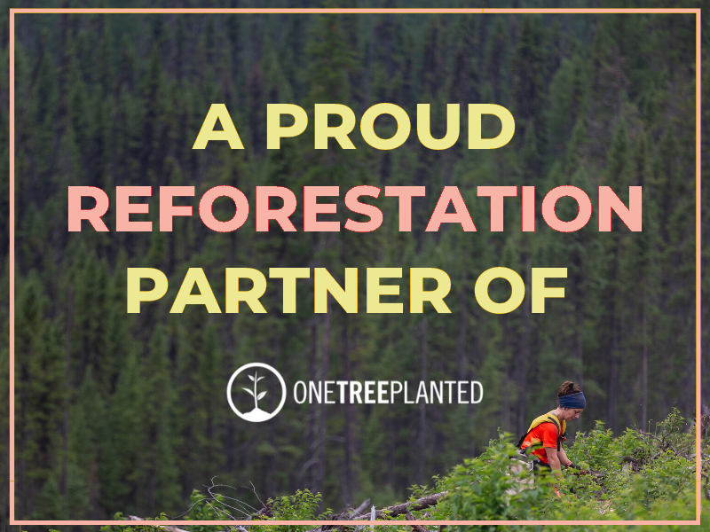 reforestation one tree planted for every order