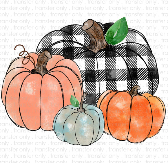 Pumpkin Patch Sublimation Transfer