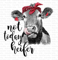 Not Today Heifer Sublimation Transfer