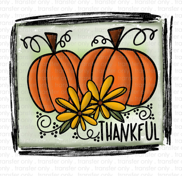 Thankful Double Pumpkins Sublimation Transfer