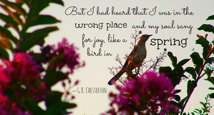 Chesterton on The Wrong Place