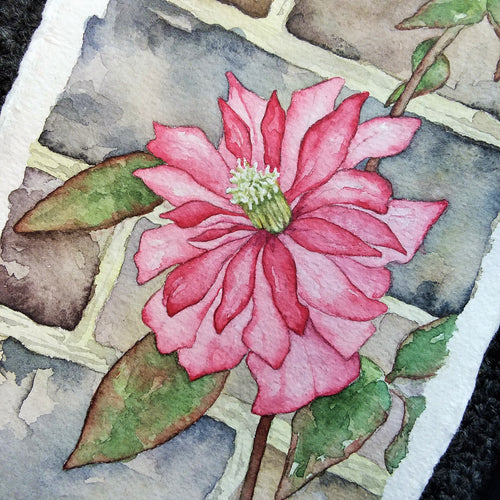 Trailing Pink in Heslington Village (Variant 2): Original Watercolor Painting