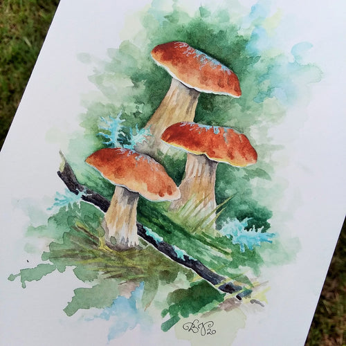Mushroom Study I: Original Watercolor Sketch