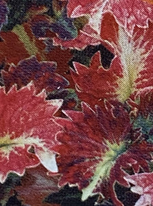 COLEUS, STAINED GLASSWORKS TILT A WHIRL