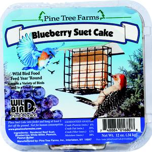 BIRD FEED, BLUEBERRY SUET CAKE
