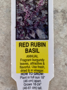 BASIL, RED RUBY