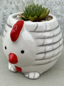 POTTED SUCCULENT, TINY CHICKEN