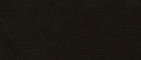 Natuzzi Leather Grade 20