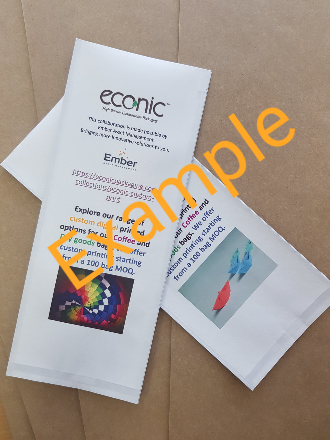 Custom Print Econic®Snow Coffee Bag: 100 bags - 500g