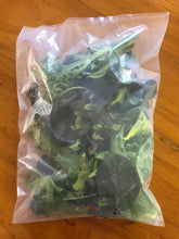Load image into Gallery viewer, Wholesale EcoClear™ Compostable Fresh Produce Bag - Small (1000 bags)