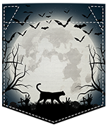 Poche chat halloween
