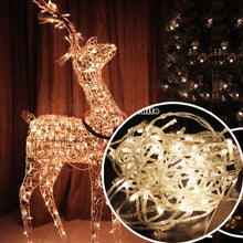 Load image into Gallery viewer, 100 LED Fairy String Waterproof Party Lights