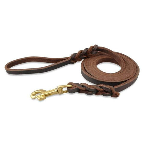 Strong Comfortable Leather Leash - 2 Colors