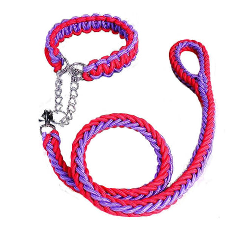 Double Strand Heavy Duty Pet Collar
