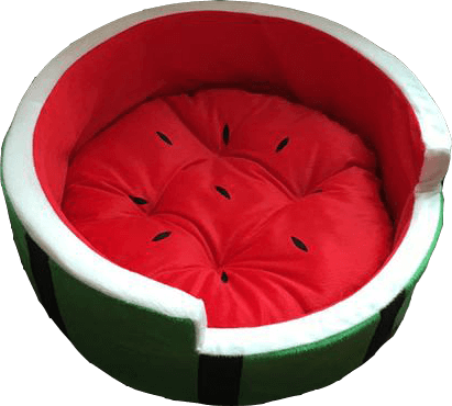 Cute Watermelon Dog Bed - 3 Sizes