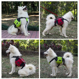 Saddle Up Pack For Dogs - 8 Colors