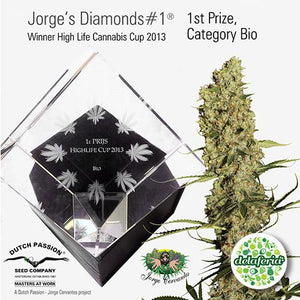Jorge's Diamond #1
