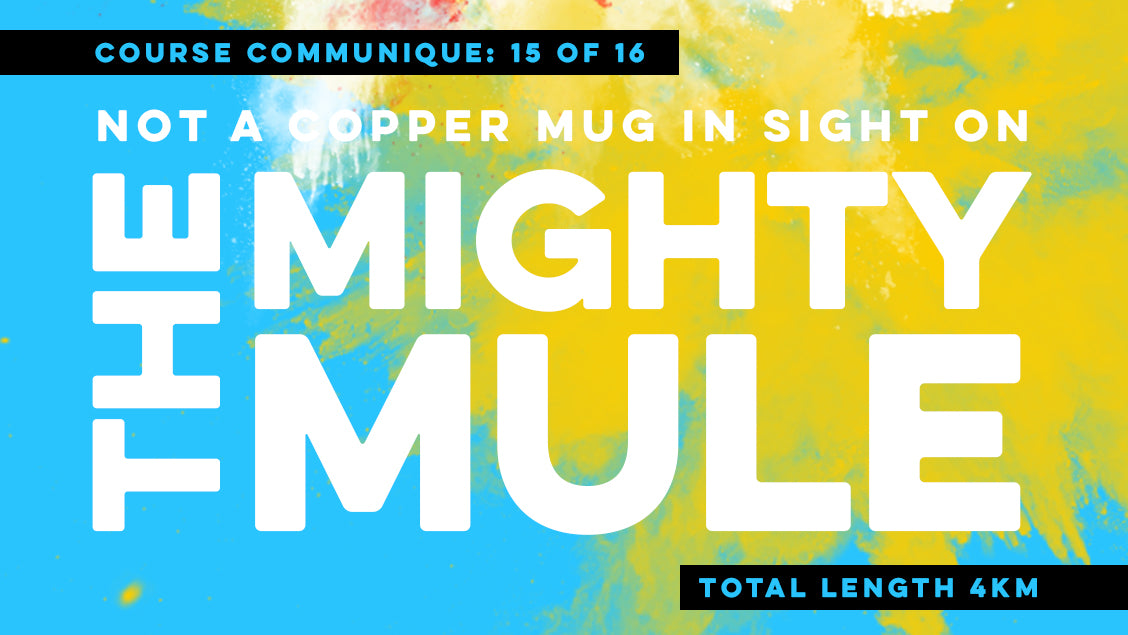 Course Communique #15: Mighty Mule