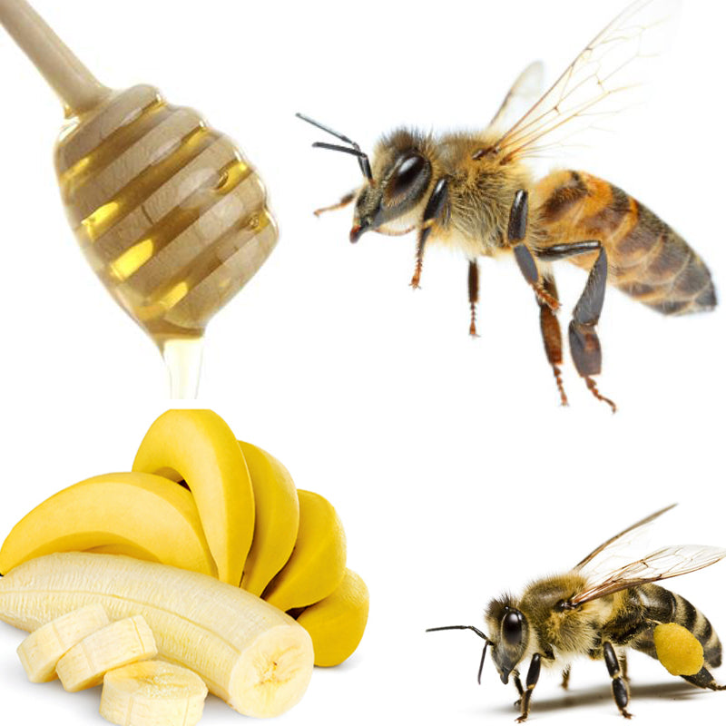 Honey stick with honey on it, Flying be, Stationary bee, bunch of bananas.