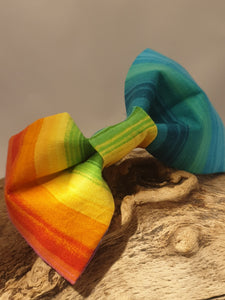 Rainbow Brights Bow