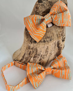 Dog and Dad Bow Tie Set
