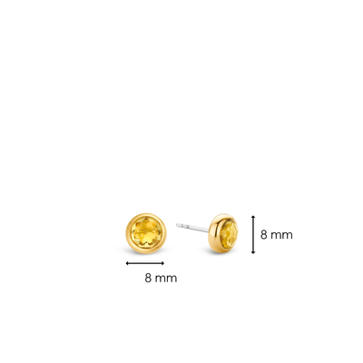 TI SENTO - Milano Earrings 7748TY